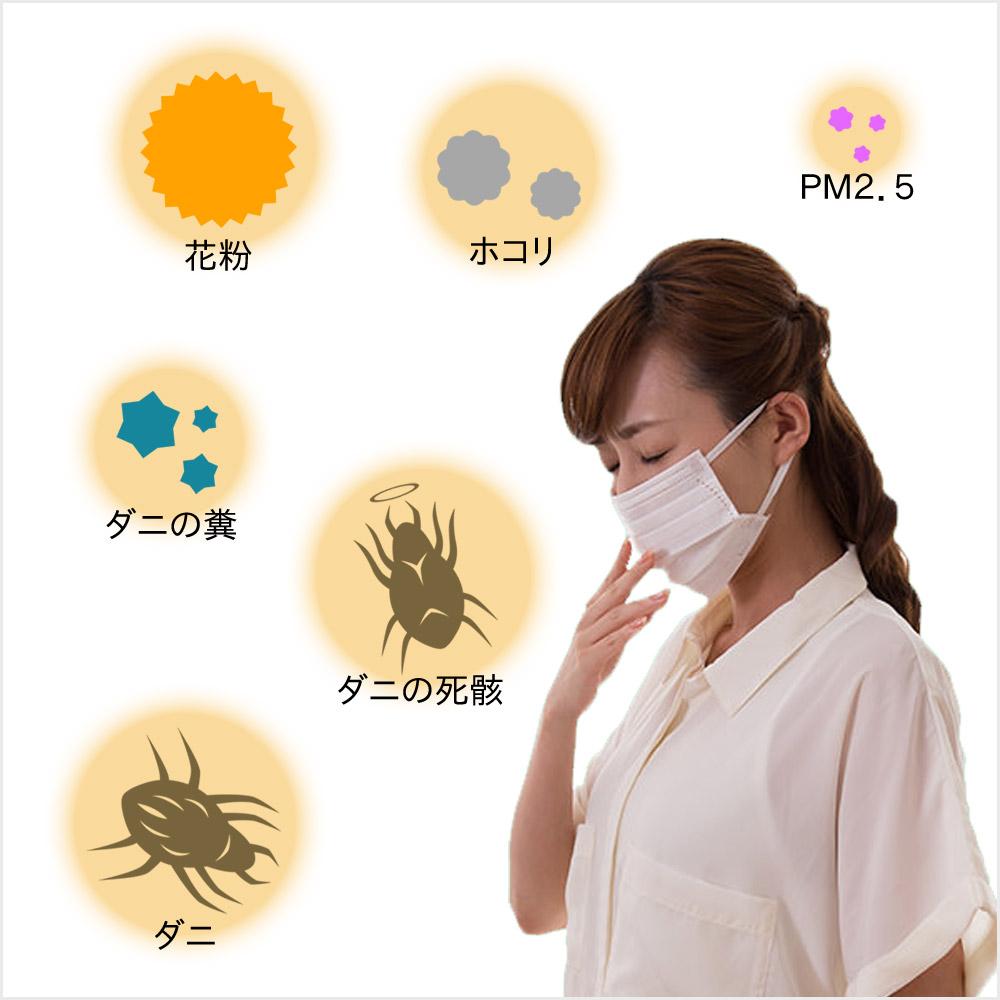 アレルギーの原因は何?